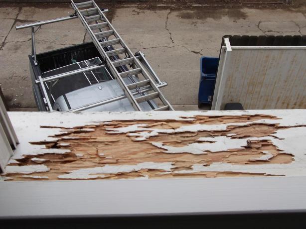 Termite damaged window sill